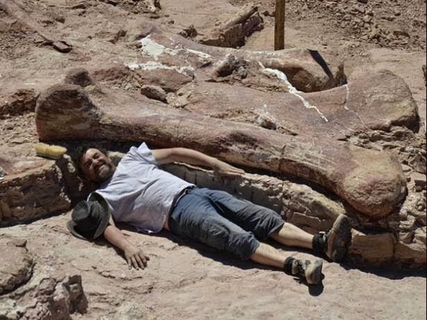 titanosaurio-argentina.jpg 1398818830