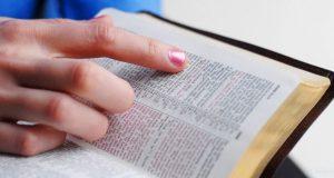 robaronbiblia22012016